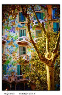 Casa Batllo  Casa Batllo by Gaudi', in Barcelona