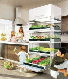 """Hyundai's Kitchen Nano Garden resembles a refrigerator and makes home gardening easy by using the latest in hydroponic technology.  It lets you grow fresh organic herbs, vegetables, and flowers right in your kitchen, taking up no more space than a full-sized refrigerator. Because it's inside with controllable light, water and nutrient supplies, it lets you grow organically, and the plants would act as a natural air purifier.  Also, you won't be subject to the whims of weather and seasons."""