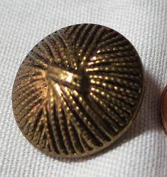 7 Vintage gold toned metal buttons.  0.75ins loop back