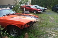 Mustang Downsizing: Herd For Sale! - http://barnfinds.com/mustang-downsizing-herd-for-sale/