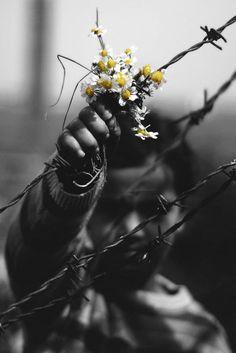 """""""A sinceridade é ferramenta útil nas mãos do inimigo. Sem nos confrontarmos com ela, tornamo-nos pessoas gelatinosas e mornas, no conforto das """"mentiras sinceras"""" que brotam das bocas, olhos e abraços daqueles que nos querem bem. Precisamos da sinceridade do inimigo para nos atiçar o desejo do bom combate, para nos despertar diante do opositor. Amigos não são sinceros o suficiente para nos fortalecer; os inimigos, sim."""""""