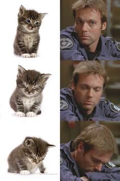 spockemon:  spockemon:  couldn't resist :D  hnnn remember i made this haha he is still a tiny kitteh  hehehe you can't deny the resemblance