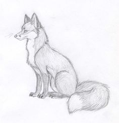 Fox Sketch – New 2012 by Vicnor on DeviantArt – Tiere Realistic Animal Drawings, Cool Art Drawings, Cute Animal Drawings, Pencil Art Drawings, Cartoon Drawings, Easy Drawings Of Animals, Sketches Of Animals, Animal Sketches Easy, Sketchbook Drawings