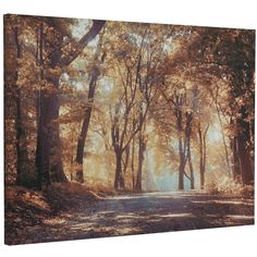 Buy Autumn in the Park Exclusive Canvas   The Range