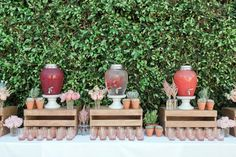 Marlan and Laurén of Twink + Sis are two wildly stylish sisters who know their way around a great party. For their latest installment captured by Jenna Elliott, they blanketed a gorgeous outdoor setting in every shade of pink to celebrate sweet baby Frankie on the way. A mix of succulents and astilbe, the prettiest blush glasses and […] Floral Baby Shower, Boho Baby Shower, Girl Shower, Bridal Shower, California Baby, Baby Shower Drinks, Baby Shower Table, Fiesta Baby Shower, Shower Party