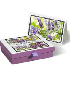 Heart Of Provence Stationery  $14.99