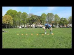 Goalkeeper Training: Agility Drill - YouTube