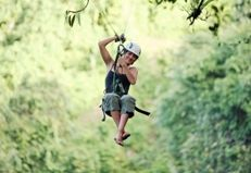 Tree frog Zip lines......Here I come