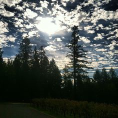 The sun rising over CADE Winery in Angwin