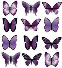 Pildiotsingu butterfly for cake decorating tulemus
