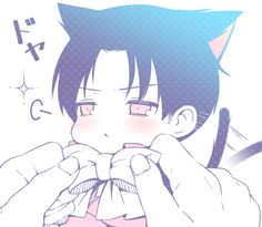 Neko Levi Rivaille <3 .....DYING OF CUTENESS!!!!!!