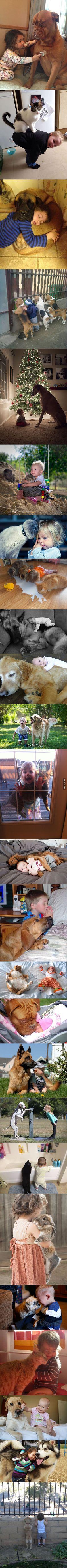 Des images incroyable montrant le liens entre les animaux et les enfants...