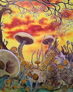 Magic Mushroom Photography : Photo
