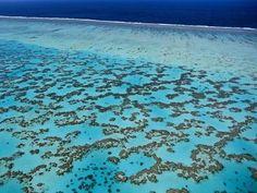 Nagy Korallzátony, Ausztrália