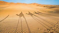 Morocco's most popular tours dazzle the senses.