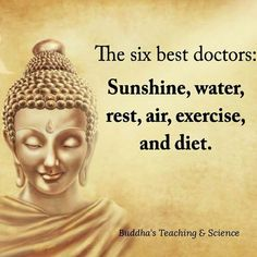 Happy Quotes : Six best doctors. - Hall Of Quotes Great Quotes, Quotes To Live By, Me Quotes, Motivational Quotes, Wisdom Quotes, Inspirational Quotes About Health, Amazing Quotes, Sucess Quotes, Inspire Quotes