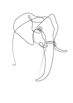 Elephant line drawing