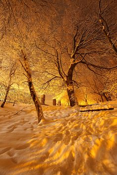Snow, lit by the yellow glow of street lights.