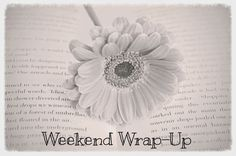 Writer's Corner: Weekend Wrap Up January 25, 2015  Last day to enter this giveaway hop.