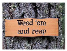 Humorous Carved Wood Garden Sign  Weed 'em and by FunMadeProducts, $29.99