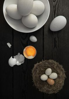 VrayWorld - Just eggs