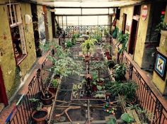 Szimpla Kert, Budapest: See 4,045 reviews, articles, and 2,309 photos of Szimpla Kert, ranked No.1 on TripAdvisor among 174 attractions in Budapest.