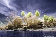 near-infrared-photo-3