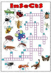 They look at the pictures and write the words. List Of Insects, Insects Names, Vocabulary Worksheets, Crossword, Esl, Writing, Summer, Pictures, Crossword Puzzles