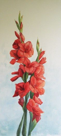 Google Image Result for http://www.bridgetbossartvanotterloo.com/img/paintings/watercolor/red_gladioli.jpg