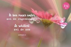 Ik ben maar een waterdruppel Courage Quotes, Me Quotes, Dutch Quotes, Just Be You, Pretty Words, Printable Quotes, Life Inspiration, Wise Words, Encouragement