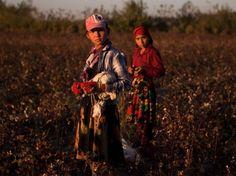 fast fashion uzbek cotton forced labour