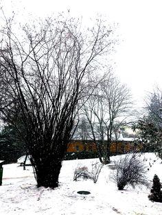{Korvapuusti} finn fahéjas csiga | Római kömény Snow, Outdoor, Outdoors, Outdoor Games, The Great Outdoors, Eyes, Let It Snow