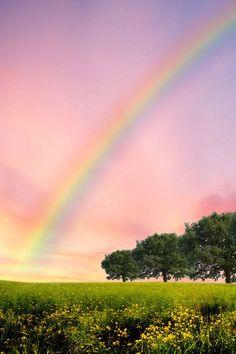Rainbow - Szivárvány