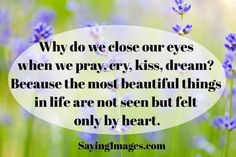 Why do we close our eyes when we pray, cry, kiss, dream?... Because the most beautiful things in life are not seen but felt only by heart.