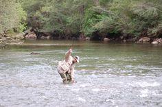 Momentos antes de coger una #trucha en el río Ebro