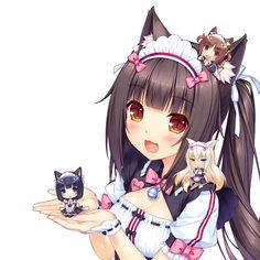 Chocola is a queen. Anime -Nekopara OVA  Ignore This Plz #anime #animegirls #animeedits #manga #art #mangaart #lewd #lewdness #lewdgirls #kurumi #waifus #nekopara #nekogirl #cosplay #cosplaygirl #animegirl #animefan #animepic #otaku #otakugirl #weeaboo #gamergirl #gameing #japan #animeworld #animeecchi #ecchii #ecchigirl #loli #havensdailywaifus
