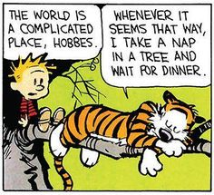 The world is a complicated place, Hobbes. Whenever it seems that way, I take a nap in a tree and wait for dinner.