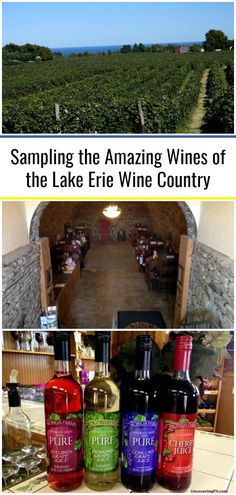 Sampling the Amazing Wines of the Lake Erie Wine Country - UncoveringPA