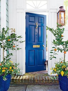 Here are the best feng shui front door colors for your front door. Know how to use color to create a strong and beautiful front door with feng shui. Pintura Exterior, Best Front Doors, The Doors, Entry Doors, Bright Front Doors, Home Front Door, Colored Front Doors, Coloured Doors, Front Door Paint Colors