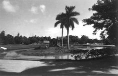 Crandon Park Zoo ~1969 Old Florida, Vintage Florida, Florida Home, Miami Florida, Miami Beach, Great Memories, Childhood Memories, Miami Attractions, Costa