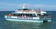 Dolphin Watching - Fishing Trips - Boat Rides in Virginia Beach | Rudee Tours