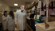 Researchers at Stanford University School of Medicine and the South San Francisco pharmaceutical company Second Genome Inc. have jointly received a $2.1 million grant to recruit…