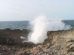 Shete Boka National Park | Carmabi Curacao