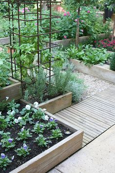 Raised beds and patio layout