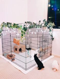 Neue Pet Rabbit Indoor Bunny Cages Ideen You are in the right place about dog kennel indoor diy Here Animal Room, Cute Baby Animals, Animals And Pets, Cute Dog Toys, Bunny Room, Bunny Cages, Hamster Cages, Cages For Rabbits, Mini Lop
