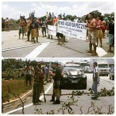 ÍNDIOS POTIGUARA DA PARAÍBA EM FOCO: Protesto interrompe trânsito na BR-101 em Mamangua...