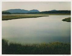 Eliot Porter, Tidal Marsh, McKinley, Mount Desert Island, Maine, 1965