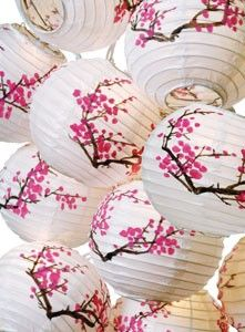 cherry blossom party (pinned to my Party Inspiration board).