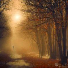 "Suffering is a gift.  In it is hidden mercy.""   ~ Rumi —"