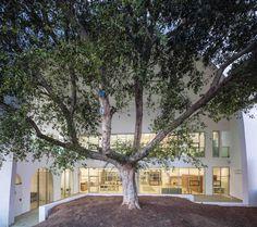 Gallery of Ezra Lemarpe Medical Rehabilitation Center / Weinstein Vaadia Architects - 8